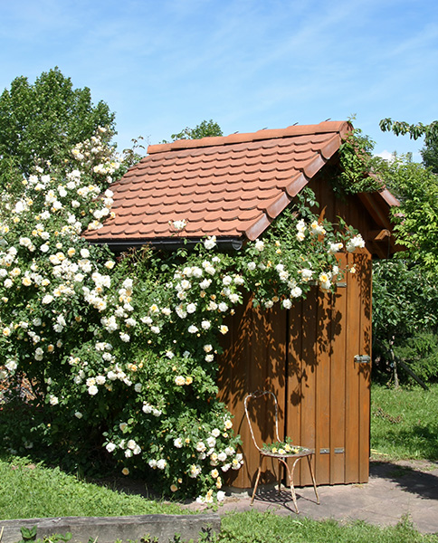 Entretien d\'un abri de jardin en bois | Gamm vert