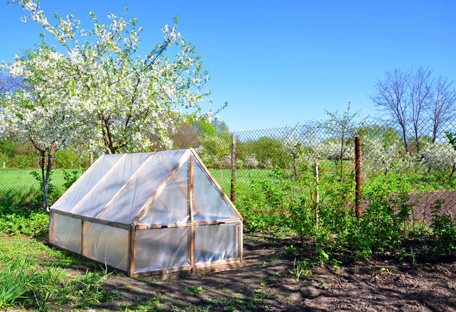 comment fabriquer une serre de jardin pas cher gamm vert