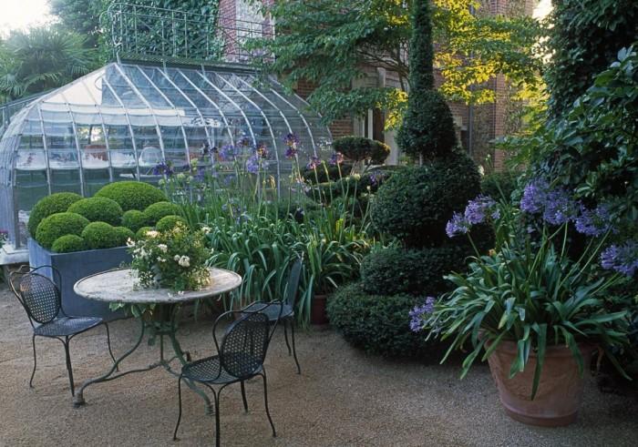 Plantes et jardins for Arbuste en pot exterieur