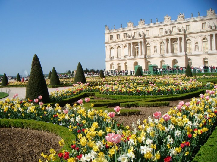 Les Jardins Du Chateau De Versailles Gamm Vert