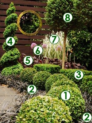 Un petit jardin contemporain de buis topiaires sc nes de for Jardin urbain contemporain