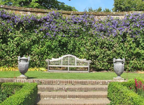 15 plantes pour un jardin anglais dossiers for Jardin anglais terrasse
