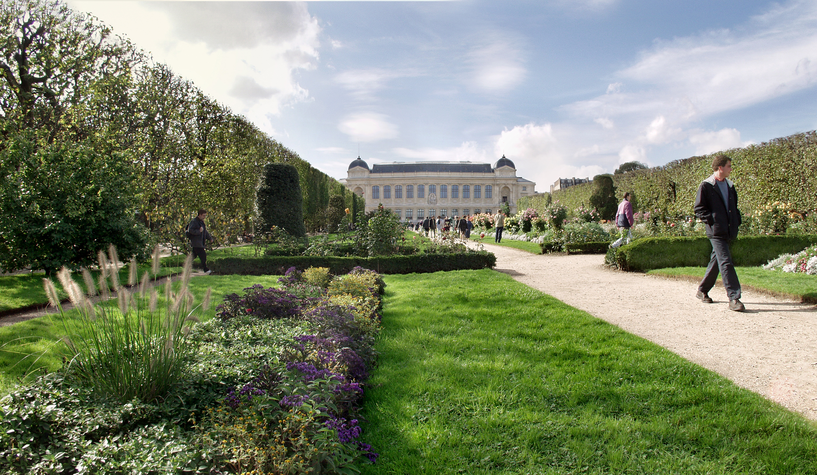 Le jardin des plantes promenades for Jardin des plantes