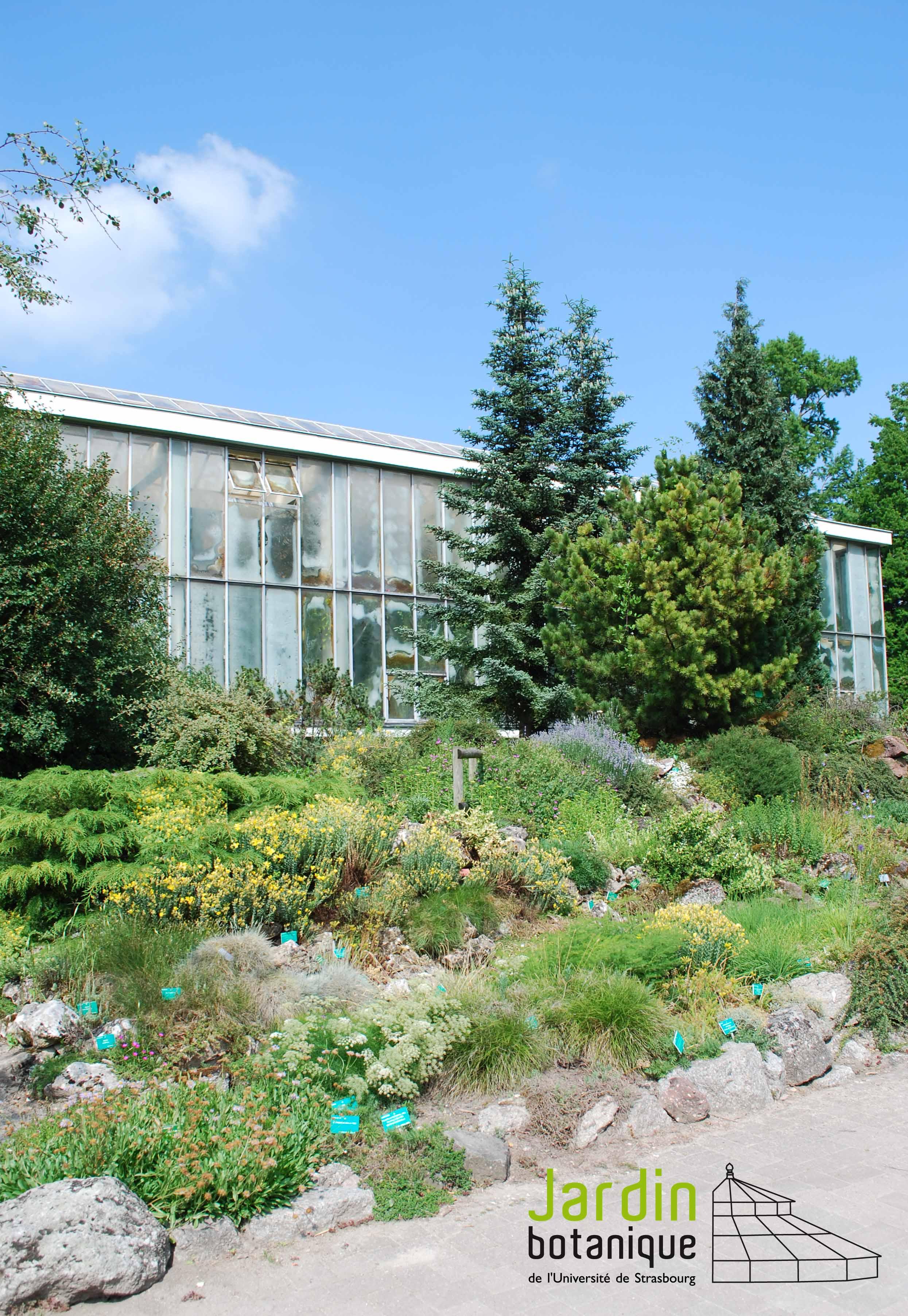 Le jardin botanique de l 39 universit de strasbourg promenades - Jardin botanique de l universite de strasbourg ...
