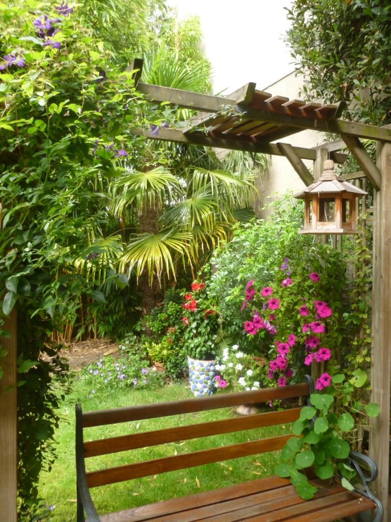 Photo Petit Jardin Exotique janine m. - 94700 | gamm vert
