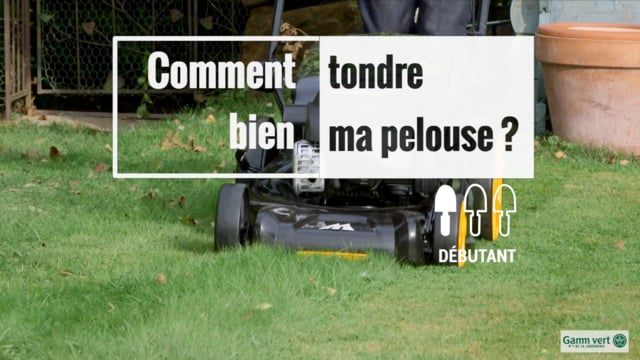 Comment mettre la pelouse en rouleau