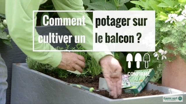 Potager Au Balcon Gamm Vert