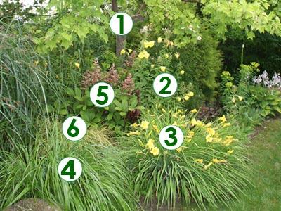 une sc ne estivale l 39 ombre d 39 un arbre sc nes de jardins. Black Bedroom Furniture Sets. Home Design Ideas