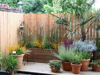 assortiment exotique sur balcon sc nes de jardins. Black Bedroom Furniture Sets. Home Design Ideas