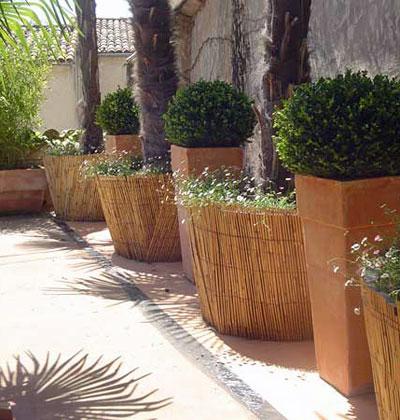 Un petit jardin de village avec terrasse jardins de paysagistes - Petit jardin avec palmier strasbourg ...