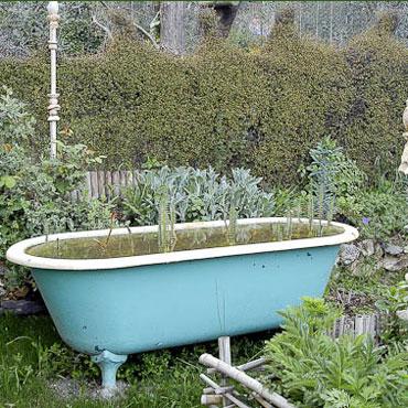 Bassin de jardin avec une baignoire bassin de jardin - Baignoire oiseaux jardin ...
