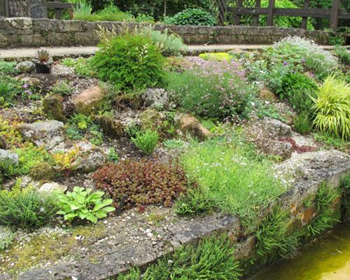Amenager son jardin rocaille meilleures id es cr atives pour la conception de la maison - Plantes filtrantes bassin rennes ...