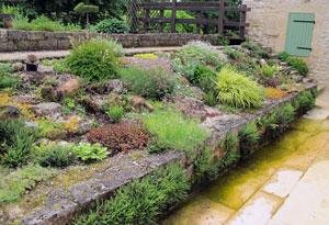 Creer Un Jardin De Rocaille Gamm Vert