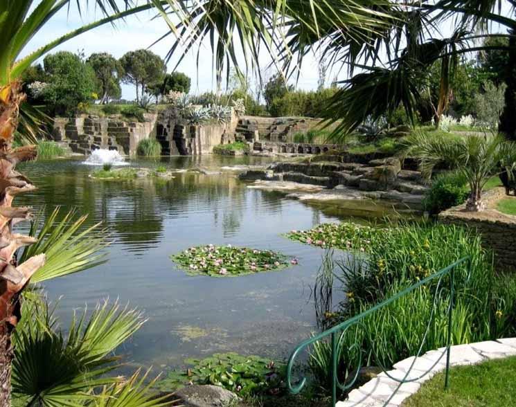 Plantes et jardins for Jardin st adrien