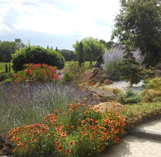 Une Scène Minérale Et Fleurie Pour Jardin Sec (Scènes De