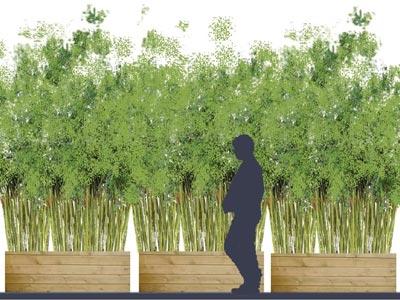 rideau de bambous sur balcon sc nes de jardins. Black Bedroom Furniture Sets. Home Design Ideas