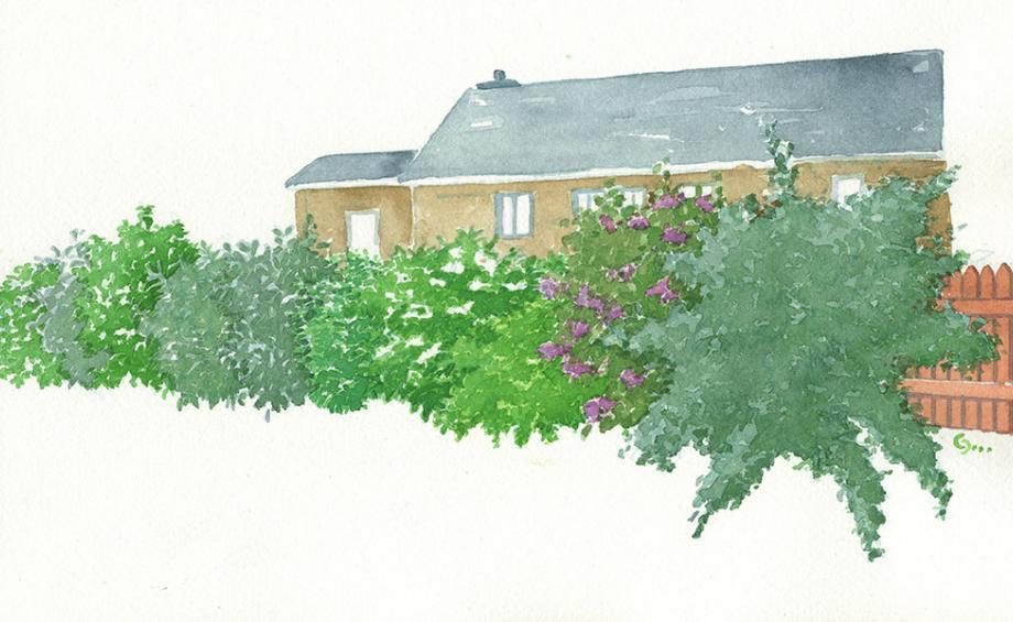 id e am nagement jardin d co jardin gamm vert. Black Bedroom Furniture Sets. Home Design Ideas