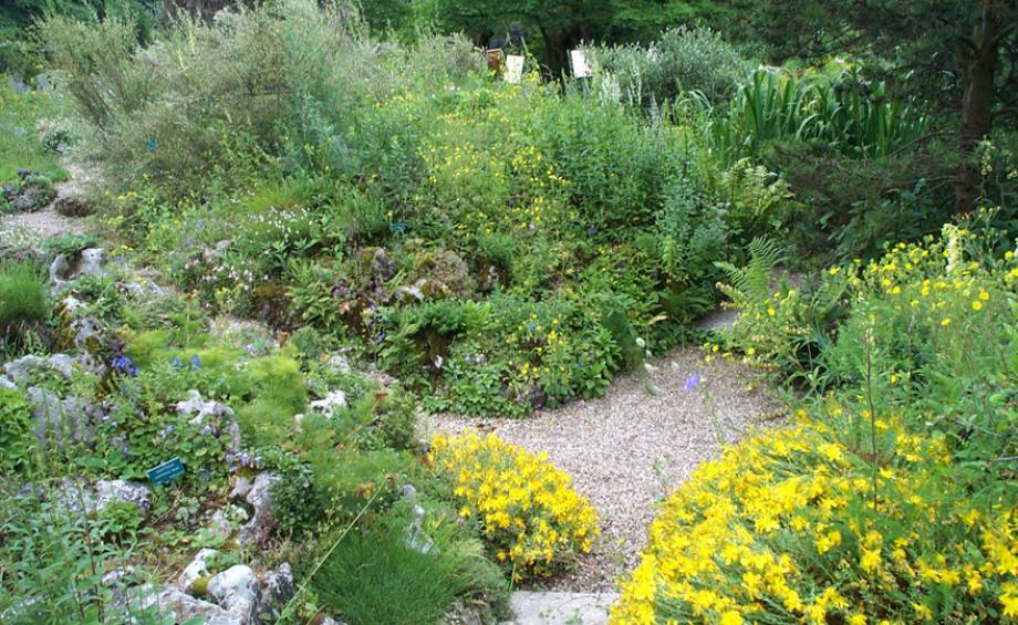 inspirations jardins le magazine gamm vert. Black Bedroom Furniture Sets. Home Design Ideas
