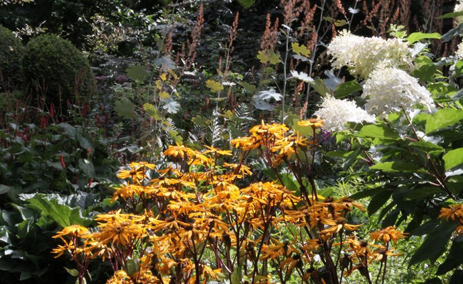 Id e am nagement jardin d co jardin gamm vert for Amenagement jardin 93