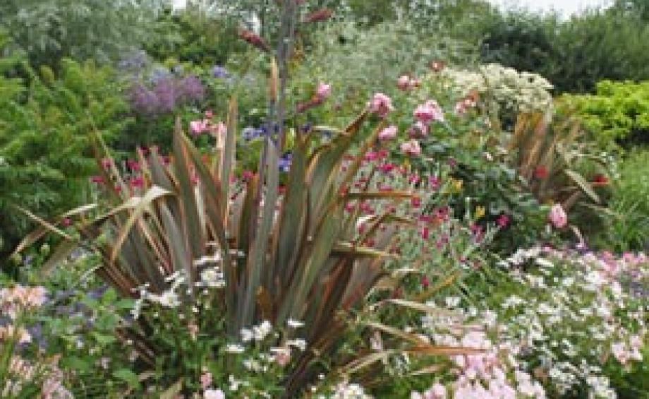 Idée aménagement jardin – Déco jardin | Gamm vert