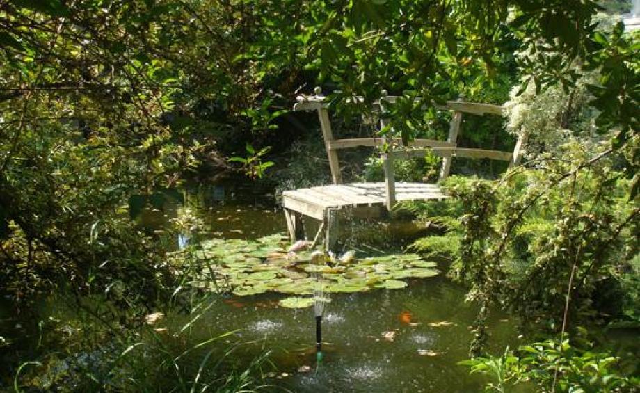 conseils jardinage fleurs potager arbres gamm vert. Black Bedroom Furniture Sets. Home Design Ideas