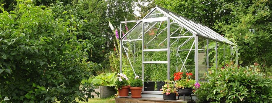 Guides d 39 achat plantes et jardins gamm vert for Achat plante jardin