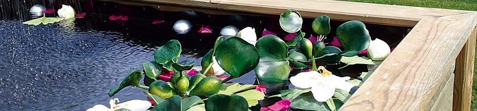 Entretien de son bassin de jardin | Le Magazine — Gamm vert