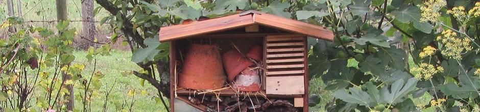 Installer un h tel insectes le magazine gamm vert for Hotel a insecte coccinelle
