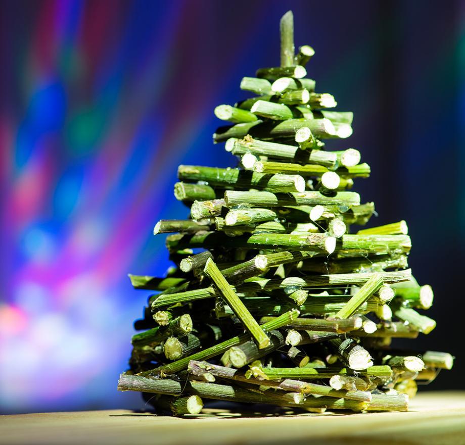 Deco De Noel Dans Le Jardin quelle déco de sapin de noël ? | gamm vert
