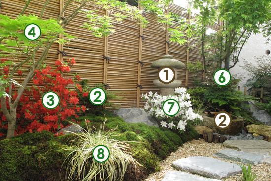 Un d cor japonais dans un petit jardin l 39 ombre le magazine gamm vert - Plante pour jardin zen ...