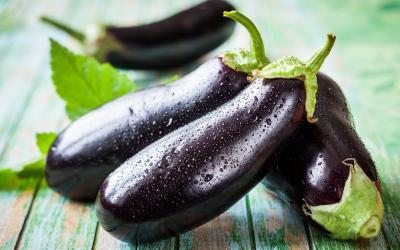 Secret de conservation 12 : les aubergines