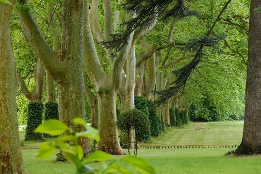 Le parc du ch teau de montlaur le magazine gamm vert for Jardins romantiques francais