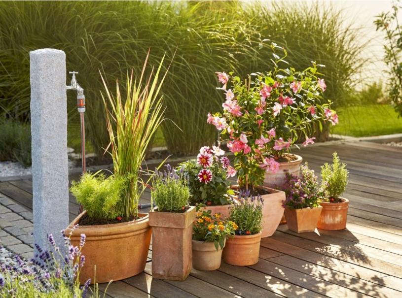 Choisir Son Systeme D Arrosage De Vacances Pour Balcons Terrasses