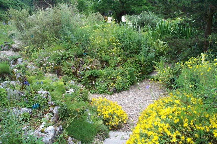 Jardin de rocaille gamm vert - Jardin de montagne ...