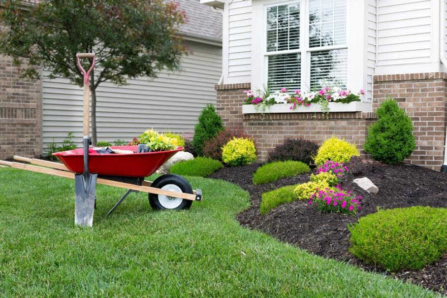 Que planter au mois d'octobre ? | Gamm vert