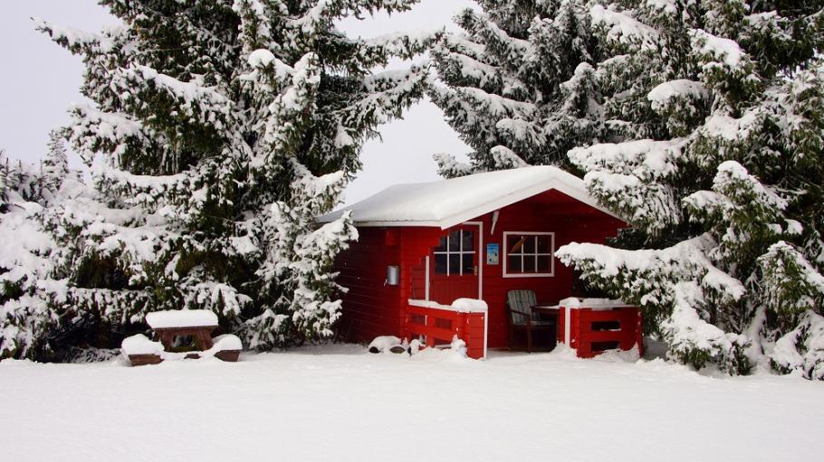 Comment isoler mon abri de jardin ? | Gamm vert