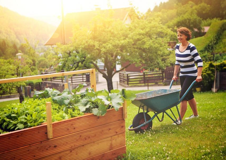 comment faire un carr de potager facile gamm vert. Black Bedroom Furniture Sets. Home Design Ideas