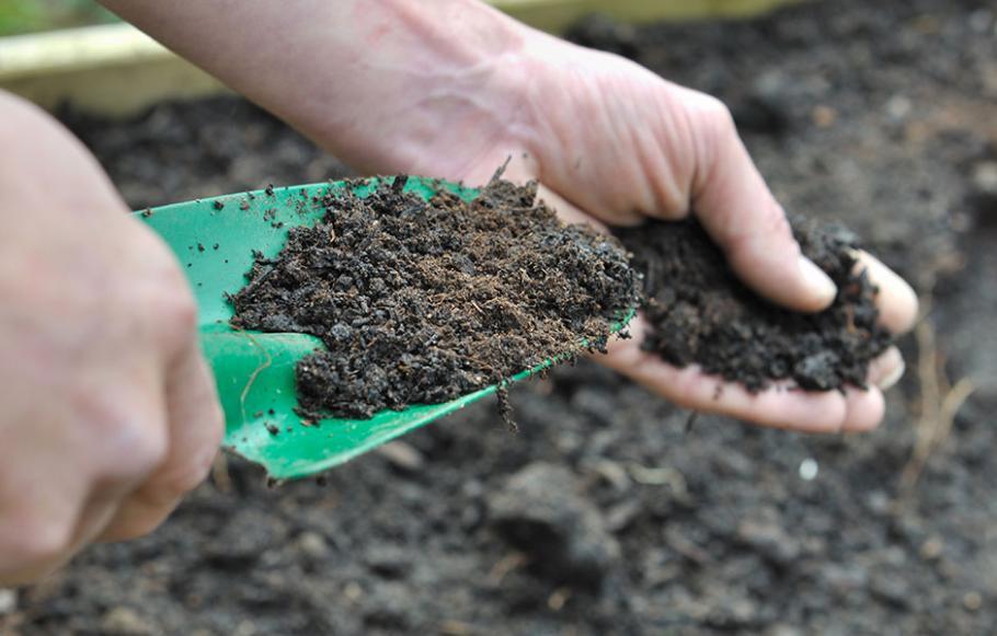 Utiliser du soufre dans le jardin gamm vert - Les produits menagers utilises dans le jardin ...