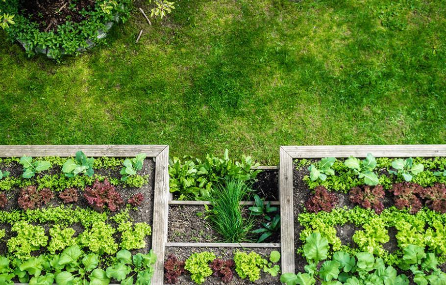 Comment monter ma serre tunnel gamm vert - Comment monter une serre de jardin ...