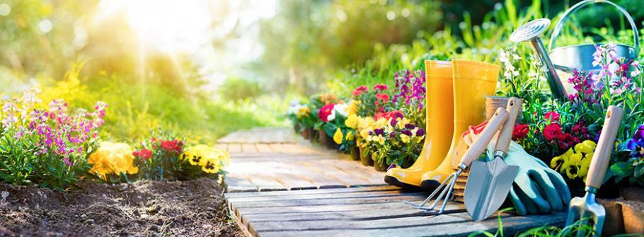 Preparez Votre Jardin A L Arrivee Du Printemps Gamm Vert