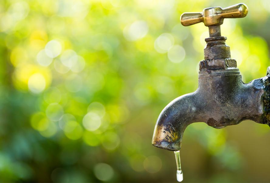 24 recettes pour économiser l'eau au jardin