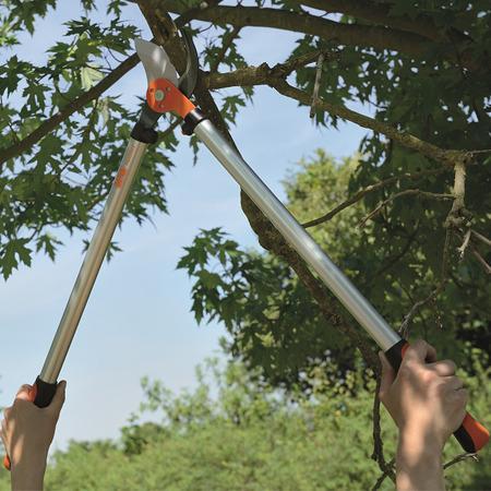 choisir les bons outils pour l 39 lagage des arbres le magazine gamm vert. Black Bedroom Furniture Sets. Home Design Ideas