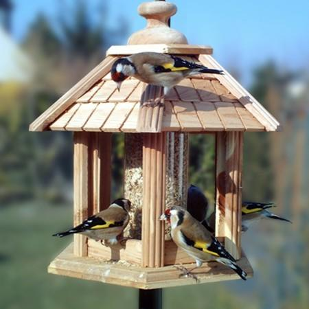 nettoyez nichoirs et mangeoires oiseaux gamm vert. Black Bedroom Furniture Sets. Home Design Ideas