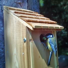 Choisir un nichoir pour les oiseaux du jardin gamm vert - Plan de mangeoire pour oiseaux du jardin ...