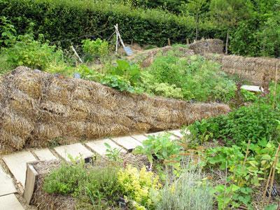 Un paysage go ter ou la culture d 39 un potager sur for Jardin potager en anglais