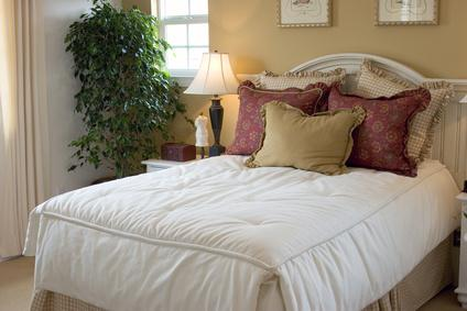 choisir ses plantes d 39 int rieur pour la chambre le magazine gamm vert. Black Bedroom Furniture Sets. Home Design Ideas