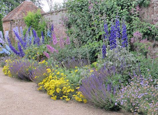 15 plantes pour un jardin anglais le magazine gamm vert