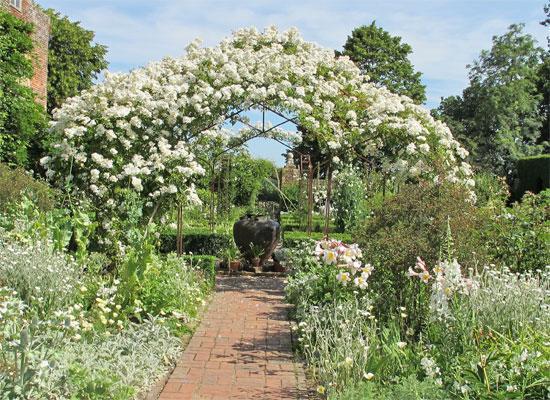 15 plantes pour un jardin anglais le magazine gamm vert for Plan jardin anglais