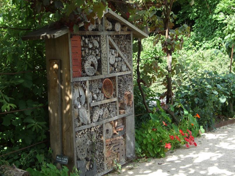 Accueillir les auxiliaires du jardinier le magazine for Conseil du jardinier