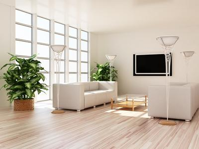 Choisir Ses Plantes D Interieur Pour Le Salon Et Le Sejour Gamm Vert